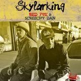 DJ KRESKY SKYLARKING MIX-TAPE.mp3
