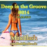 Deep in the Groove 014 (16.09.16)