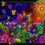 Ralle Aus Halle - Progressive Trance Mix - Color Change Mix - 23.10 2008