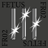 FR02 – Fetus