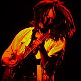 Bob Marley - Paramount Theatre 05/30/76 (AUD)