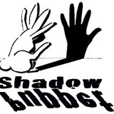 2017-06-03 - BitF 2017 Shadow Puppet Pavilion Fundraiser
