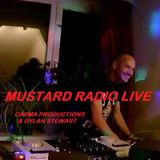 Pure Mustard Live - 17th of November 2017 - Carma Productions - Dylan Stewart