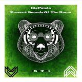 BigPanda Present - Sounds of the room #010 (Special Guest Elizarraras Djane)