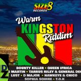 Warm Kingston riddim mix 2019 - DJ Perez