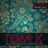 TOM K - No Troubles In Paradise Mix