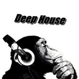 Deep House Mix 2015