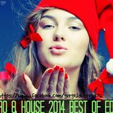 ►New Electro&House 2014★Best Of EDM Mix★ ♪MINI-MIX♪
