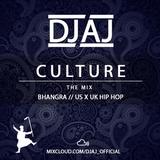 Culture | Bhangra Mix