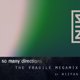 Nine Inch Nails - So Many Directions: The Fragile Megamix