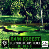 RAIN FOREST * Deep Soulful & Afro House