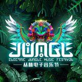 Kaskade_-_Live_at_Electric_Jungle_Music_Festival_Shenzhen_10-12-2017-Razorator