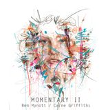 Fluidnation / Momentary II