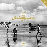 AnkleBreaker 21.07.2015 - RadioControl