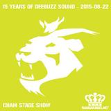 Deebuzz Sound 15 Year Anniversary 2015-08-22 - Cham Stage Show