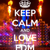>>FKN EDM MIX vol.1<<