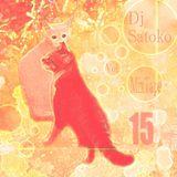 Dj Satoko ElectroPop MixTape Vol,15