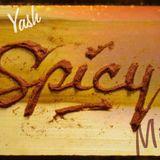 Dj Yash - Spicy Mix ep02