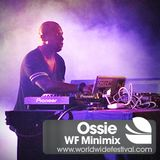 WF Minimix // Ossie
