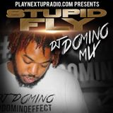 Stupid Fly Mix by DJ Domino