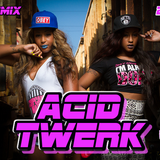 ACID TWERK VOL 2
