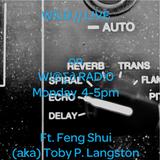 W!LD L!VE Series - #6 - Feng Shui (Toby P. Langston)