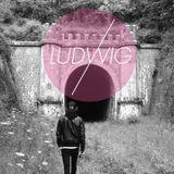 Ludwig Set #9