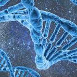 biochemistry 2 L04