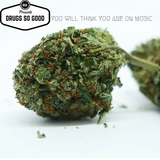 BGK Presents Drugs So Good, You Will Think You Are On Music