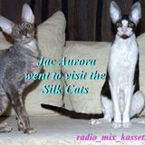 Jac Aurora went to visit the Silk Cats