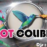 Caribbean Mix Session - DJ Whyne - Hot Colibri - 31.01.2015 - Lost Le Colibri (DanceHall)