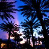 DJ Darrell Foxx presents ( Tonight's the night ) Miami Soul.
