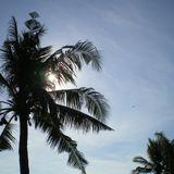 Ay Caramba @ One Palm Point