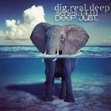 DigRealDeep_episode_1401