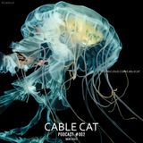 Cable Cat - Podcast 002