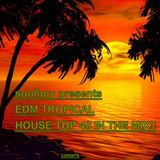 edm tropical house top 40