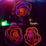 DJ Punyo @ Kulturschmelze 16.10.2015 – Transdimensionaler Techno Jam by Mindentertainment.org