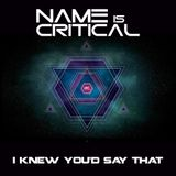 Name Is Critical - I Knew You'd Say That