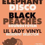 Black Peaches Soundsystem for Elephant Disco