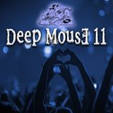 Deep MousE 11