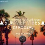 SUMMER VIBES MIX VOL 30.5.2015 (electro-hardstyle-club house)