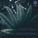 Mudra podcast / Anton El'Kin - Natural Shapes [MM65]