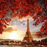 Autumn in Paris - Parisian Garden Mix 2019