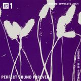 Perfect Sound Forever - 4th April 2019