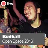 Budball @ Open Space 2016 [Momentum Live]
