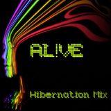 The Hibernation Mix (1/28/13)