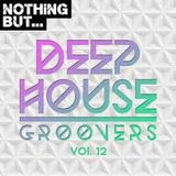 Deep House Groovers Mix