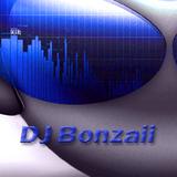 DJ Bonzaii - Fucking Hardstyle Mood Part 1
