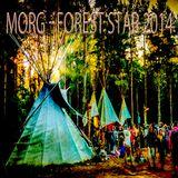 Forest Star Festival - Summer 2014