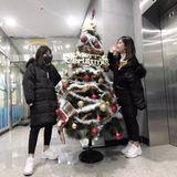 Nonstop- [Merri Christmas] Bản Nhạc Đéo Dành Cho Mùa Đông :=) HPL.